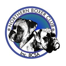 Northern_Boxer_Club__Logo_designed_by_Jabulani_design_studio_Centurion